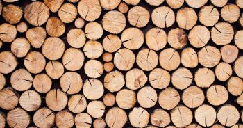 Jak zorganizować transport drewna?
